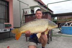 132kg-ponty